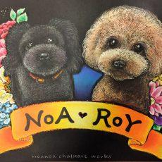 NOA・ROY