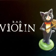 Bar VIORIN