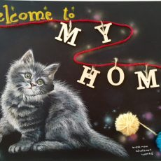 Welcome to my home(猫)