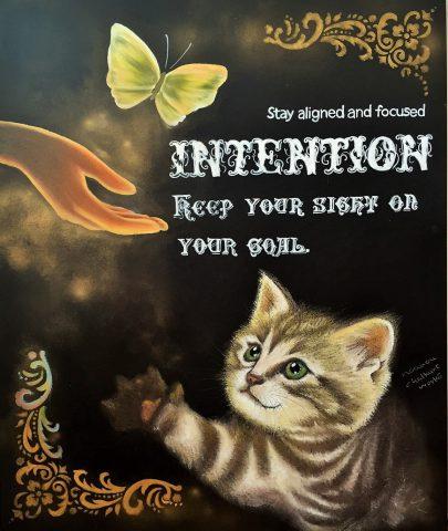 INTENTION(猫)