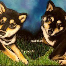 yukichi&kotetsu