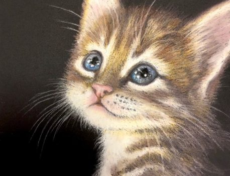 (オーダー)猫
