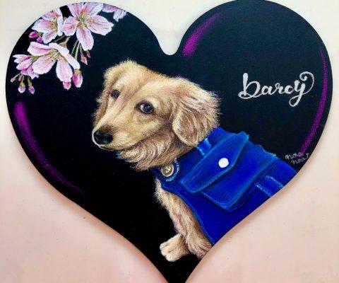 Darcyちゃん