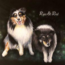 Ryu&Rui